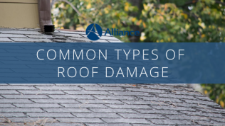 Common Types of Roof Damage